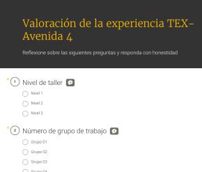 Valoración de la experiencia TEX-Avenida 4 (Nivel 1, 2 y3)
