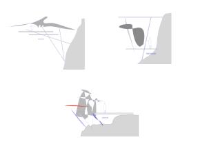 Actividad de diseño 3 | Nivel 1-2 |Metamorfosis